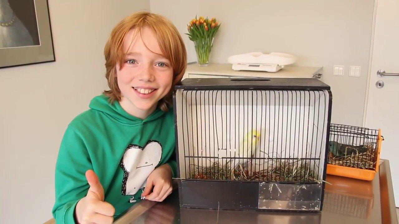 Wellensittich Krallenschneiden-Ein Junge mit Wellensittich im Käfig beim Tierarzt