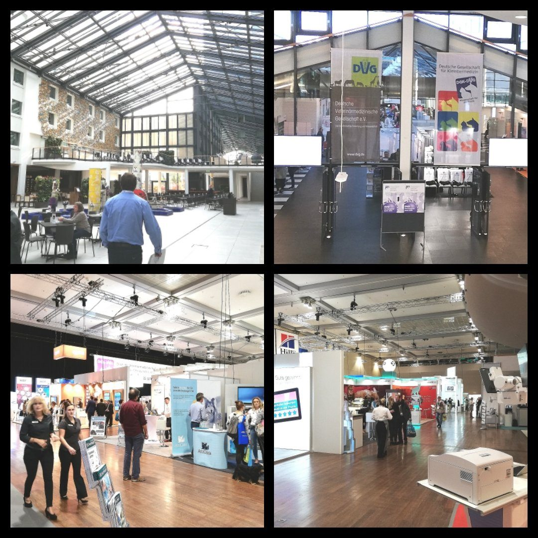 DVG Tagung - Estrel Convention Center